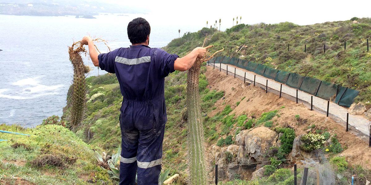 FOTO 05 RESTAURACION BORDE COSTERO LOS VILOS